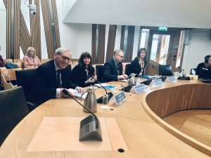 Gillian Cameron, SDP Programme Manager, gives oral evidence to the Scottish Parliament.